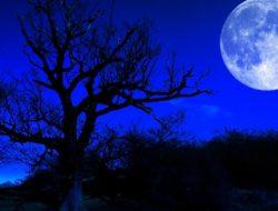 Fenomena Blue Moon akan Menghiasi Langit Indonesia Malam Ini